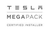 Tesla Mega Logo