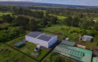 Sunspear Energy Helps Power Largest Cannabis Facility in Hawaii